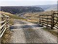 NY8028 : Cattle Grid, Pennine Way by David Robinson