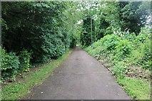 SP8535 : Path by Standing Way, Milton Keynes by David Howard