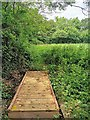 TQ3615 : Bridge over Stream near East Chiltington by PAUL FARMER