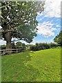 TQ3615 : Stile on Footpath near Plumpton by PAUL FARMER