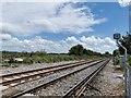 TQ3615 : London, Brighton & South Coast Railway near Plumpton by PAUL FARMER