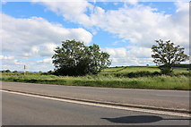 SP7516 : The A41, Waddesdon by David Howard