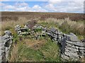 NB4046 : Shieling hut, Botan Ràdhil, Isle of Lewis by Claire Pegrum