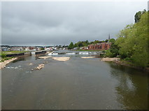SX9291 : River Exe at Trew's Weir by Chris Allen