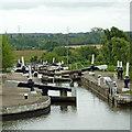 SP1876 : Flight of Locks near Knowle, Solihull by Roger  Kidd