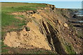 SS2005 : Cliff erosion, Efford Down by Derek Harper