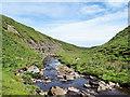 NY8817 : River Balder downstream by Trevor Littlewood