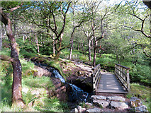 SH6251 : Bridge on the Watkin Path in Nantgwynant by Gareth James