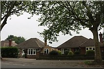 SK9872 : Bungalows on Wragby Road, Lincoln by David Howard