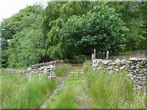 SH5645 : Gate near Plas-llyn by Gareth James