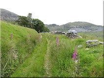 SH5644 : Route of the Gorseddau tramway near Cwmystradllyn by Gareth James