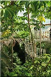 TQ1876 : Inside Palm House by Oast House Archive