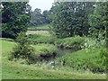 SK4056 : Alfreton Brook by Graham Hogg