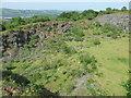 ST1785 : Cefn Onn Quarry by Colin Cheesman