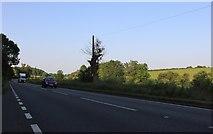 SP9490 : Stamford Road before Deenethorpe by David Howard