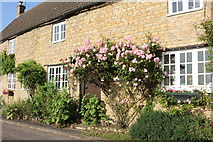 SP9694 : Cottage in Bulwick by David Howard