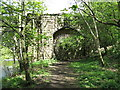 NY9038 : Bridge over the former Weardale railway by Mike Quinn