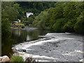 SJ2142 : River Dee, Llangollen by Stephen McKay