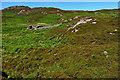 NC0628 : Ruined sheepfold by Mick Garratt