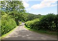 SE5588 : Shaken  Bridge  ahead by Martin Dawes