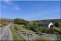 NC8955 : Chilsey, Strath Halladale by Tim Heaton