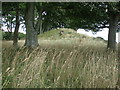 NO6855 : Maryton Law cairn viewed from the south by Adrian Diack
