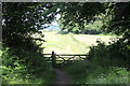 SO3106 : Track from Goytre Wharf to Goytre Wood by M J Roscoe