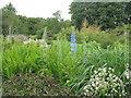 NX6054 : Cally Gardens, Gatehouse of Fleet by M J Richardson