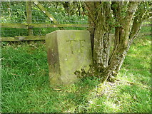 SE2547 : Boundary stone near the old packhorse track, Leathley by Humphrey Bolton