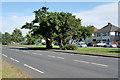 SJ5588 : Lingley Green, Liverpool Road (A57) by David Dixon