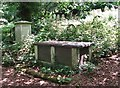 TG2408 : The grave of the Reid Family by Evelyn Simak