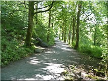 NY3304 : Elterwater to Skelwith Bridge [8] by Michael Dibb