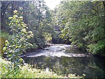NY3403 : Elterwater to Skelwith Bridge [11] by Michael Dibb