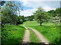 SE5190 : Estate road near to Arden Hall by Trevor Littlewood