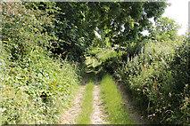 SD5273 : A walk along Kirkgate Lane (11) by Kate Jewell