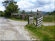 NY3103 : Track from Dale End to Elterwater [4] by Michael Dibb