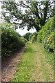 SD5273 : A walk along Kirkgate Lane (15) by Kate Jewell