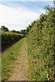 SD5273 : A walk along Kirkgate Lane (16) by Kate Jewell