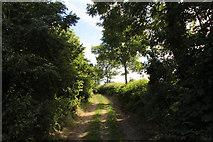 SD5273 : A walk along Kirkgate Lane (19) by Kate Jewell