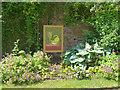 ST2885 : Citrus Celebrations (10), Tredegar House Gardens by Robin Drayton