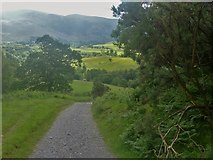 NY2925 : The ascent to Latrigg [12] by Michael Dibb