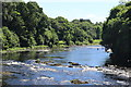 """H3493 : Salmon anglers fish the""""Gravenue"""" on the river Mourne by Des Colhoun"""