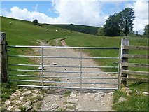 NY2825 : The ascent to Latrigg [20] by Michael Dibb
