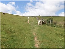 NY2824 : The ascent to Latrigg [24] by Michael Dibb