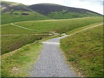 NY2725 : The descent from Latrigg [2] by Michael Dibb