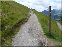 NY2725 : The descent from Latrigg [6] by Michael Dibb