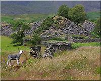 SD2895 : Banishead Quarry by Ian Taylor