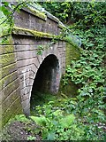 NS5568 : Tunnel entrance by Philip Halling