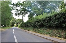 TL3929 : Biggin Hill, Hare Street by David Howard