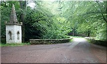J3532 : Ivy Bridge at Tollymore Park by Eric Jones